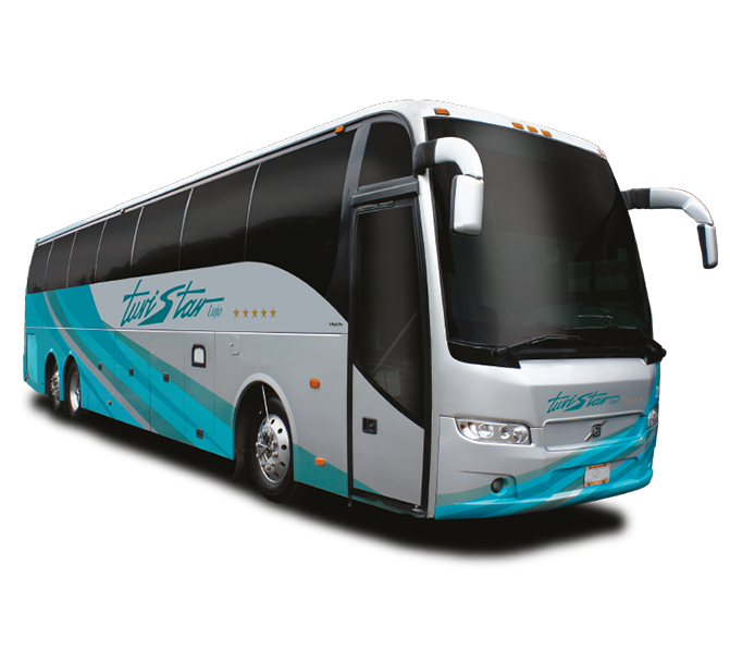 Customize Your Bus and Van Wraps