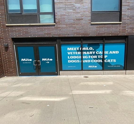 Uses of Window Signs