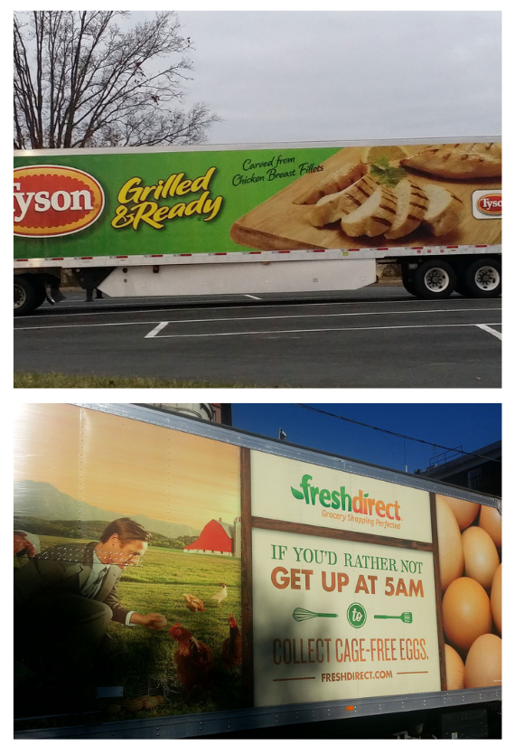 Customization Options for Vinyl Trailer Wraps and Large Vehicles